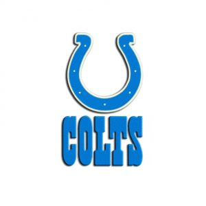 Colts embroidery